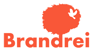 brandrei agencja interaktywna logo