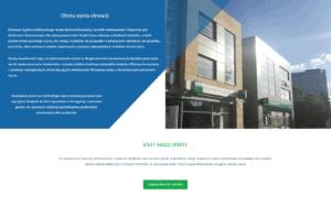 strona firmowa opis usługi 2